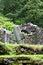 Reefert Church ruins, Glendalough, Ireland