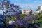 Stock Image : Reids Palace - Funchal, Madeira