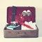 Stock Image : Retro suitcase