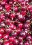 Stock Image : Ripe, Red Cherries