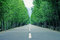 Stock Image : Road