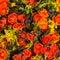 Stock Image : Roses background.