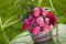 Stock Image : Roses bouquet