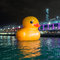 Stock Image : Rubber Duck Project HK Tour