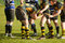 Stock Image : Rugby Lineout Preparation