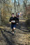 Stock Image : Runners run along the forest path