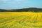 Stock Image : Rural landscape