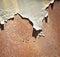 Stock Image : Rusty metal & Peeled Paint