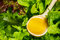 Stock Image : Salad with olive oil