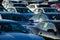 Stock Image : Salida del sol sobre una porción pila de discos de las ventas que estaciona