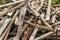 Stock Image : Scrap wood