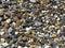 Stock Image : Sea pebbles