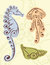 Stock Image : Seahorse, Shell Scroll Designs