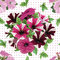 Stock Image : Seamless pattern, bouquet of petunias
