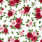 Stock Image : Seamless pattern with red and pink roses on white. Vector illustration.