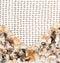 Stock Image : Seashells on the net for fishing
