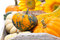 Stock Image : Seasonal pumpkin in wooden tray, selective focus
