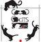 Stock Image : Set cats