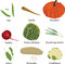 Stock Image : Set of different vegetables