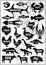 Stock Image : set vector silhouettes of animals and birds on wood background