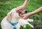 Stock Image : Showing  dog's teeth