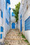 Stock Image : Side street at Sidi Bou Said, Tunis, Tunisia
