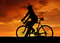 Stock Image : Silhouette of the cyclist