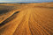 Stock Image : Silver Lake Sand Dunes