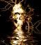 Stock Image : Skull Reflection