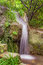 Stock Image : Small park waterfall among plants