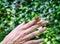 Stock Image : Snail crawling on female hand