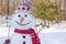 Stock Image : Snowman