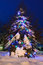 Stock Image : Snowy Tree lit for Christmas