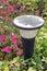 Stock Image : Solar Lawn Light
