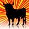 Stock Image : Spanish bull