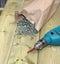 Stock Image : Spilled screws