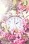 Stock Image : Spring Daylight Savings Time