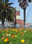 Stock Image : Spring Flowers in Deserted Christchurch City CBD