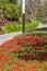 Stock Image : Spring garden