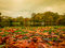 Stock Image : St. James's Park Lake in Autumn