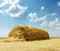 Stock Image : Stack of straw under clouds