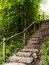 Stock Image : Staircase in the forest