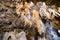 Stock Image : Stalagtites and stalagmites