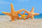 Stock Image : Starfishes on the beach