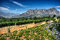 Stock Image : Stellenbosch American Express Wine Routes, South Africa