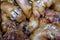 Stock Image : Stewed pig's feet