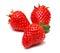 Stock Image : Strawberry fruit isolated on white background