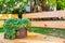 Stock Image : Succulent Plant Container Garden