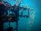 Stock Image : Sugar Wreck, Underwater Ship