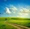 Stock Image : Summer landscape